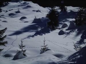 Labirinti nella neve (ph. Lorenzo Del Terra, 2005)